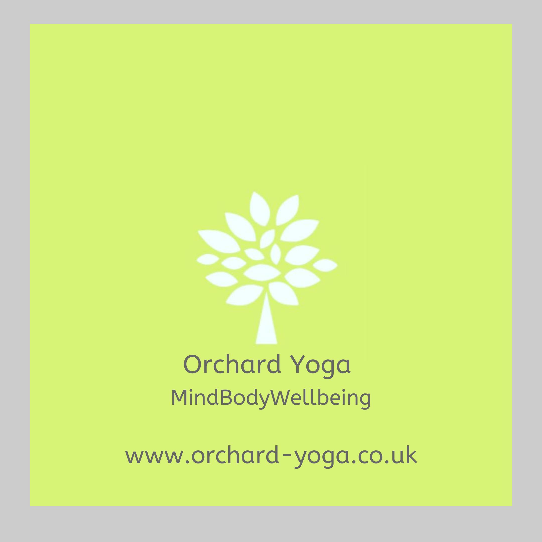 Mind boyd wellbieng logo